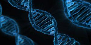 DNA Strang - Ordination Doktor Peggy Lampel