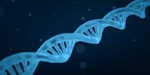 DNA Ordination Doktor Peggy Lampel Medizin